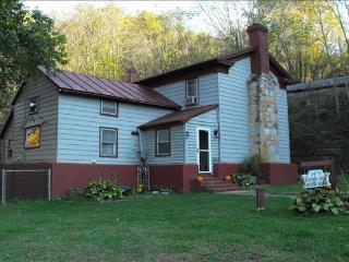 Reel Easy River Cabin - Madison vacation rentals