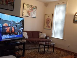 Luxury and Value.. Skyline View & McCormick Place. - Illinois vacation rentals