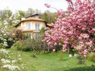 Italian Lakes 4 bedroom villa - BFY14018 - Lake Maggiore vacation rentals