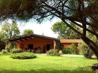 A country house close to the hills  and sea - Faenza vacation rentals