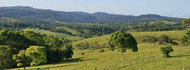 ooh, what a view! - Nightcap Cottage, Byron Hinterland - what a view! - Byron Bay - rentals