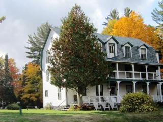 Annex Cottage - Clyffe House Cottage Resort - Dwight vacation rentals