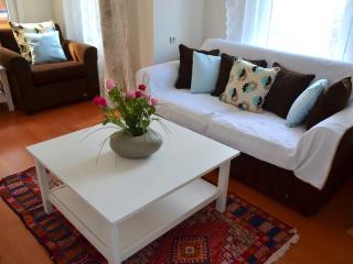 Triplex House İn a Little Yard - Bursa Province vacation rentals