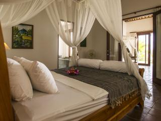 Resort Surya & Chandra, fully catered,AC, sleeps 9 - Karangasem vacation rentals