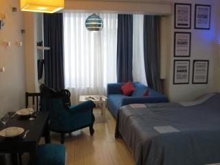 BEYOGLU STUDIO FLAT  811 - Istanbul vacation rentals
