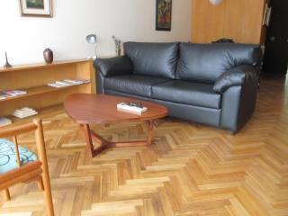 A vintage apartment in BA finest neighborhood - Buenos Aires vacation rentals