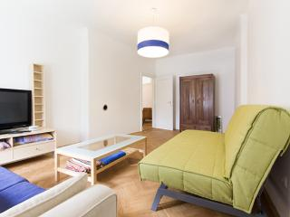 Ljubljana places - Spacious apartments (Ap. No. 5) - Ljubljana vacation rentals