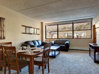 Mountain Plaza 202 - Breckenridge vacation rentals