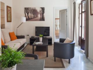 Nice apartment in Seville city centre - Seville vacation rentals