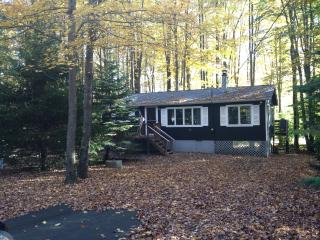 BOOK NOW for best fall foliage! Fplc/Fpit/Wifi - Pocono Lake vacation rentals