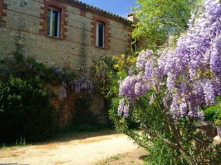 The Farmhouse gite - Alenya vacation rentals