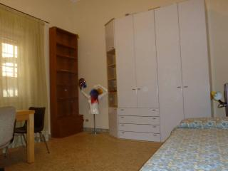 University Roma 3 /FAO/WFP/IFAD wide  single room - Rome vacation rentals
