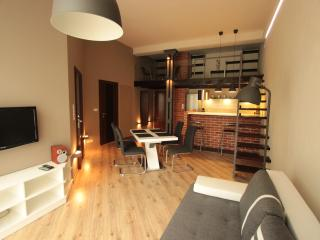 Loft Forget-me-not - Lodz vacation rentals