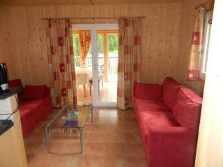 CHALET ALPINE - Stadl an der Mur vacation rentals
