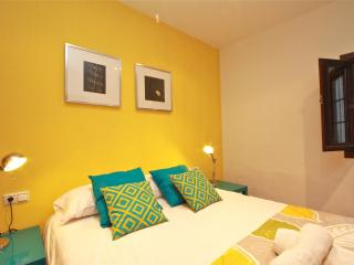 Historical centre apartment Granada3 - Province of Granada vacation rentals