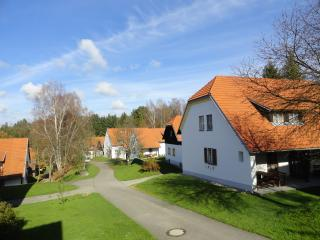 An holiday in Litschau Austria on parc with extra - Litschau vacation rentals