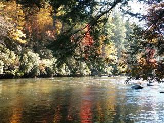 2 Bedroom plus Loft Riverside Retreat on the Toccoa River - Blue Ridge vacation rentals