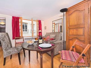 100/heart-of-paris-studio-charmer - Paris vacation rentals