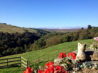 Bottoms Farm - Haworth vacation rentals