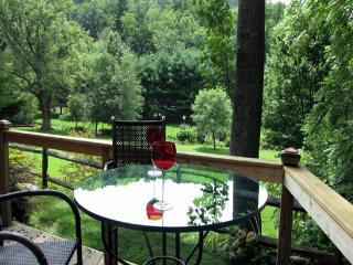 ELEGANT SANCTUARY a short drive to town, parkway.. - Asheville vacation rentals