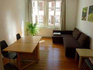 3 pieces, 6 places, 65 m2 au centre de Strasbourg - Strasbourg vacation rentals