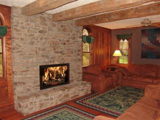 Paddler's Lane Retreat on the Youghiogheny River - Ohiopyle vacation rentals