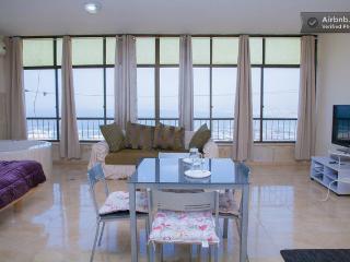 Carmel centerPanorama luxiorus 2BR  by Baha'i Gate - Haifa vacation rentals
