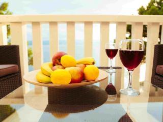 Villa Carica M1 - Mimice vacation rentals