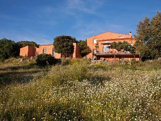 Finca el Rabilargo - Arroyomolinos vacation rentals