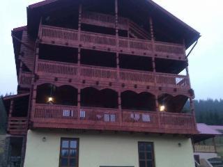 Cabana Cambiano - Cluj County vacation rentals