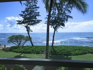 Kauai Ocean Front Top Floor Studio Paradise $99 - Kapaa vacation rentals