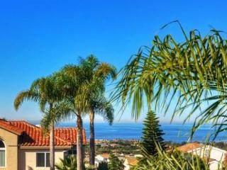 Dana Point Tri-Level Home - Dana Point vacation rentals
