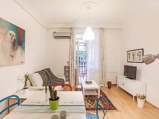 Very Central New Modern Apt / 2BR  110 - Istanbul & Marmara vacation rentals