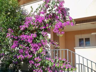 Apartment 2 - Banjole vacation rentals