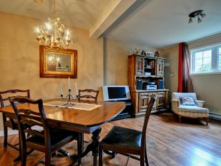 Gorgeous appartment in Wakefield - Gatineau vacation rentals