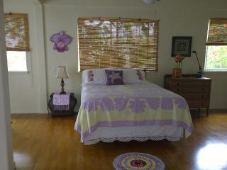 The Orchid House above Kealakekua Bay - Honaunau vacation rentals