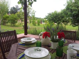 'il Mandorlo' (the Almond tree) - Alberobello vacation rentals