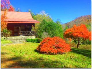 Smoky Mtn. Retreat-- Log Cabin--Vacation Rental-Lo - Robbinsville vacation rentals