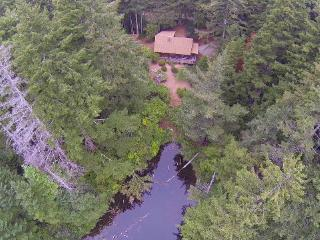 Log Cabin nestled in the woods-sleeps 6 - Bandon vacation rentals
