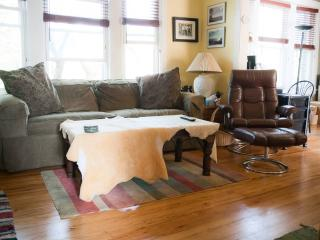 Vintage Charm in Beautiful Andersonville - Illinois vacation rentals