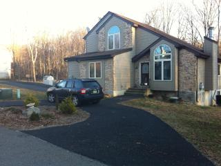 Contemporary Private Home Great for Skiing - Bushkill vacation rentals