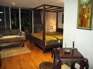 Chiang Mai executive condos for all taste and all budgets (by OWNER) - Chiang Mai vacation rentals