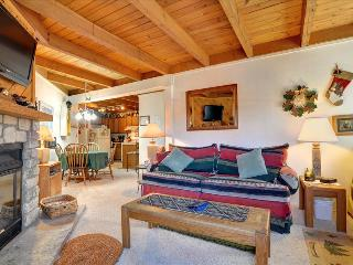 TREEHOUSE I-208: Cozy 1 Bed/1 Bath Condo with King Bed, 7 Ski Areas and a Great Clubhouse! - Silverthorne vacation rentals