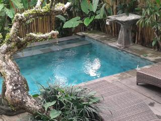 Nice Room in Paddy village - Ubud vacation rentals