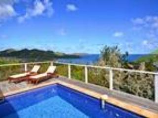 Villa Aquamarine - Saint Jean vacation rentals