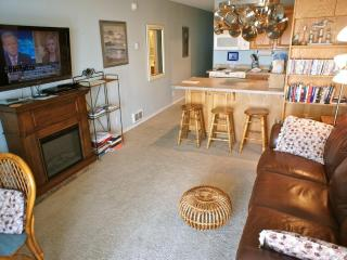 Worthy Porpoise - Top notch condo w/ full kitchen! - Lincoln City vacation rentals