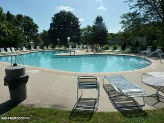 Lovely 2 Bedroom Condo - 3 Miles From Mayo! - Rochester vacation rentals