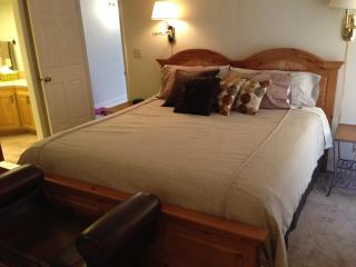 Red Cliffs Condo - Saint George vacation rentals
