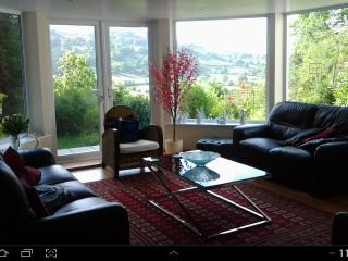 Country hillside beautiful detached property - Bodfari vacation rentals