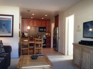 Remodeled In Center of Town, Walk to Shuttle Stops & Restaurants - Listing #296 - Boston vacation rentals